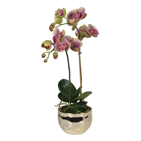 Dusty Pink Artificial Orchid in Gold Pot