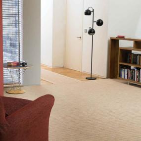 Brintions Pure Living Carpet