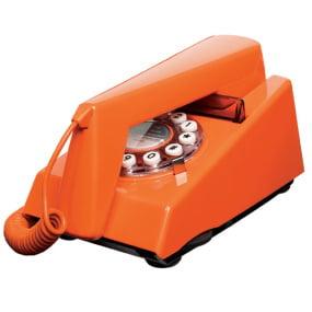 Wild and Wolf Goldfish Orange Trim Phone