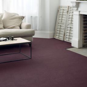 Crucial Trading Indulgent Carpet
