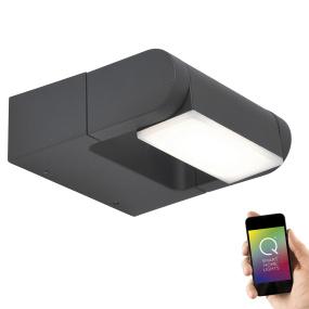 Paul Neuhaus Q-Albert Smart Home Anthracite LED Outdoor Wall Light