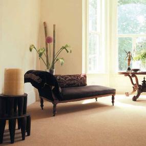 Westex Carpets Ultima Twist Major