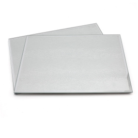 Silver Mirror Set of 2 Snakeskin Placemats