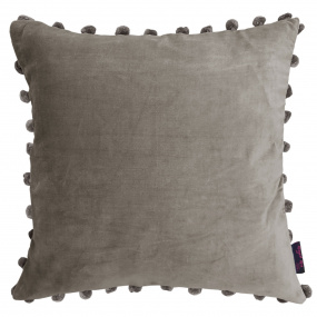 Ragged Rose Silver Cushion